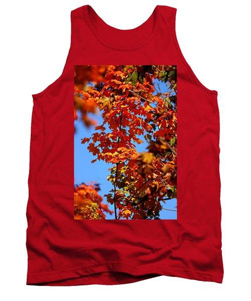 Fall Foliage Colors 15 Tank Top