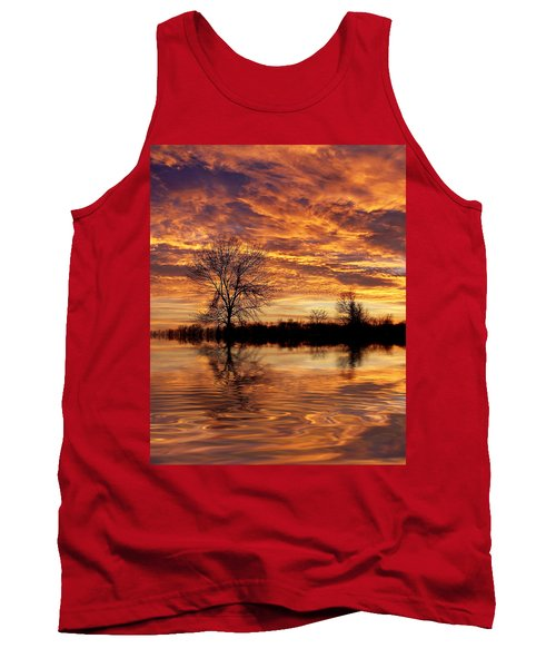 Fire Painters In The Sky Tank Top by Bill Pevlor