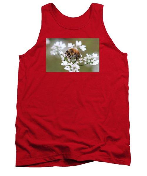 Honeybee On Cilantro Tank Top by Lucinda VanVleck