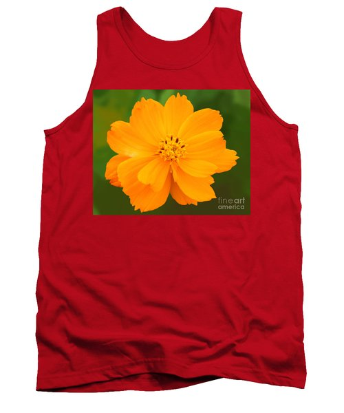 Tank Top featuring the photograph Pretty In Orange by Mariarosa Rockefeller