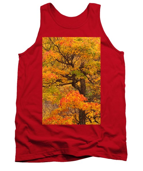 Shapely Maple Tree Tank Top