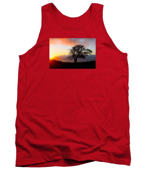 Sunset Tree In Maui Tank Top by Venetia Featherstone-Witty
