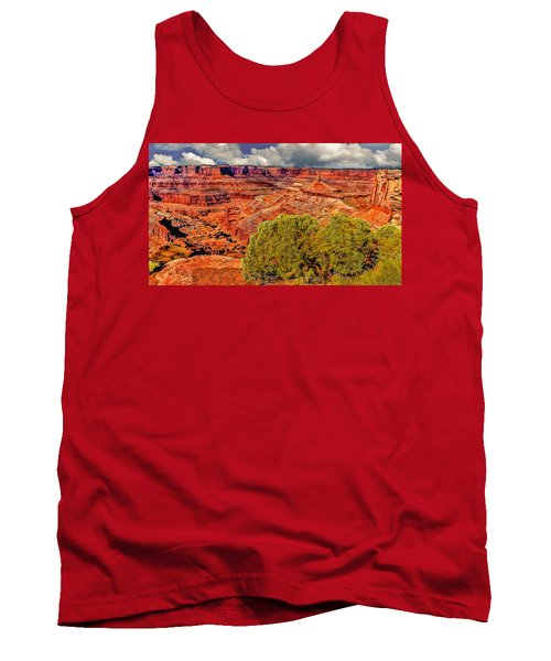 The Grand Canyon Dead Horse Point Tank Top
