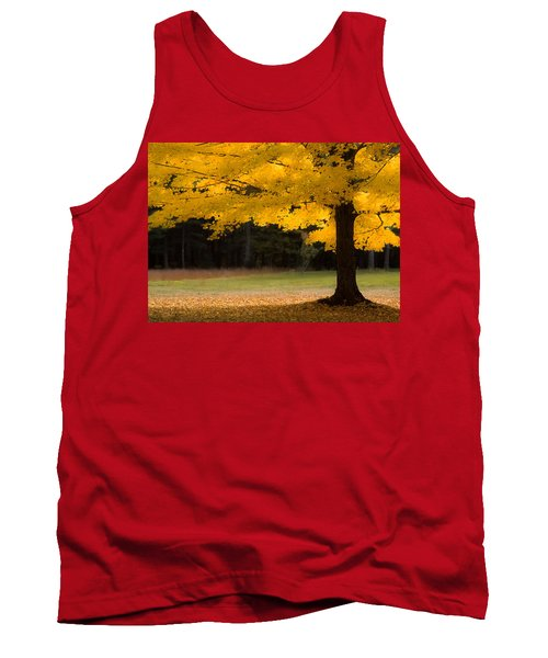 Tree Canopy Glowing In The Morning Sun Tank Top