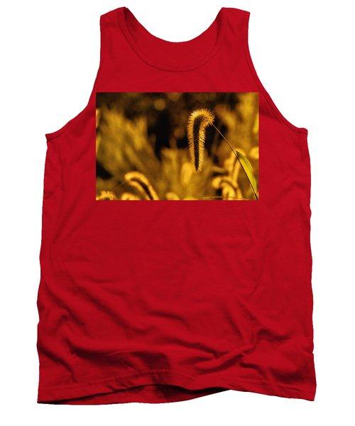 Grass In Golden Light Tank Top