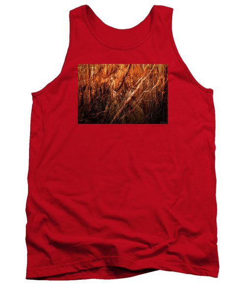 Light And Shadow Tank Top by Rick Furmanek