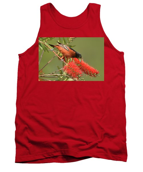 Orchard Oriole  Tank Top by Alan Lenk