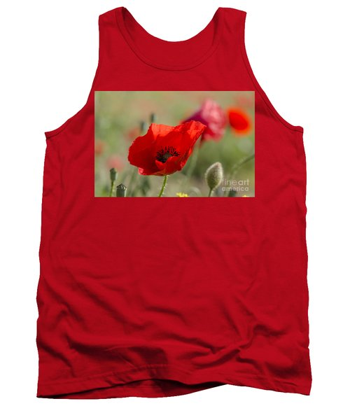 Poppies In Field In Spring Tank Top