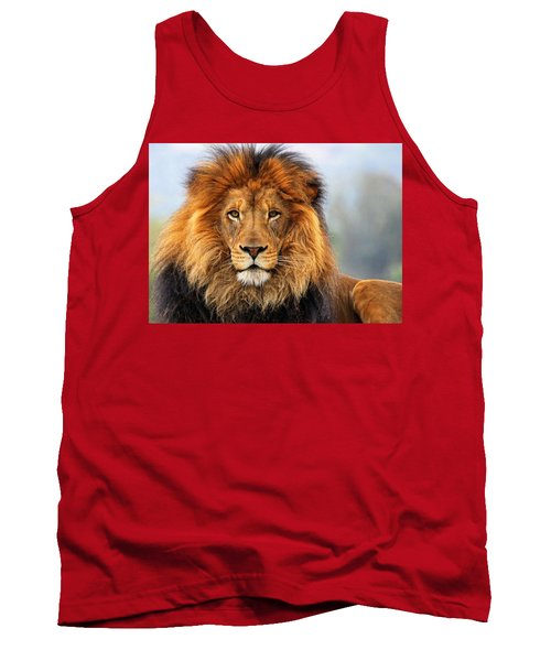 African Lion 1 Tank Top