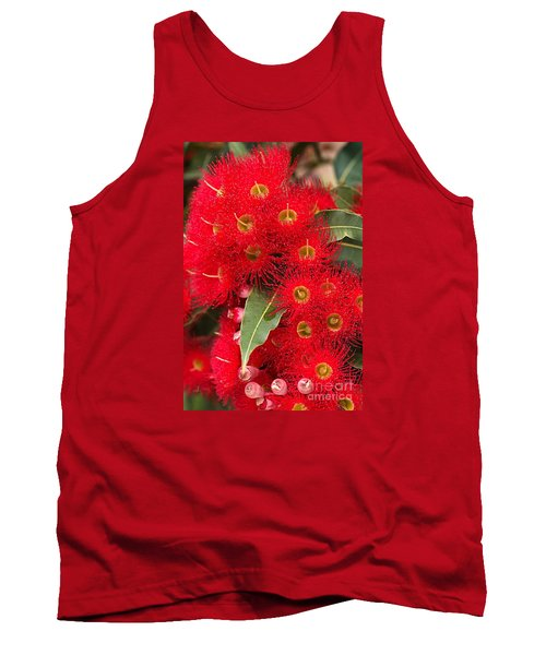 Australian Red Eucalyptus Flowers Tank Top