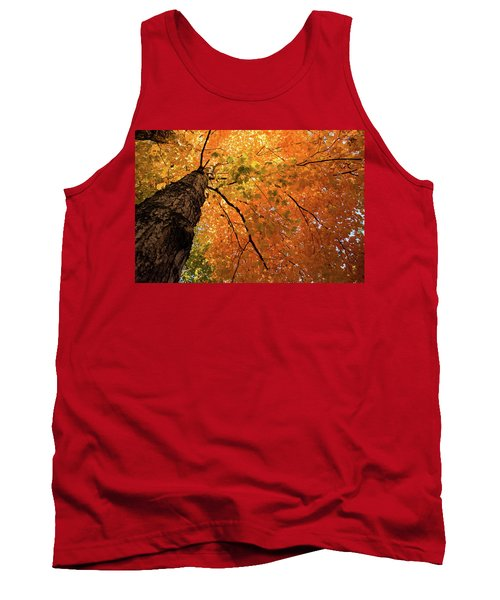 Autumn Canopy In Maine Tank Top