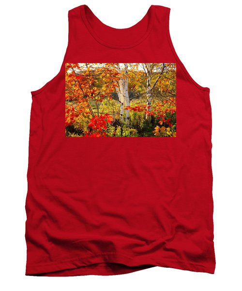Autumn Scene With Red Leaves And White Birch Trees, Nova Scotia Tank Top
