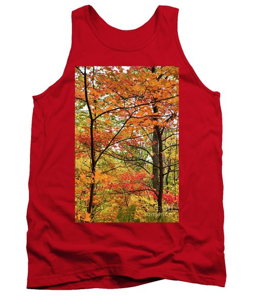 Autumn Splendor Fall Colors Leaves And Trees Tank Top by Dan Carmichael
