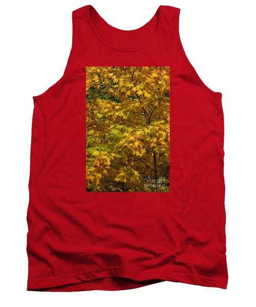 Autumnal Leaves And Trees 2 Tank Top