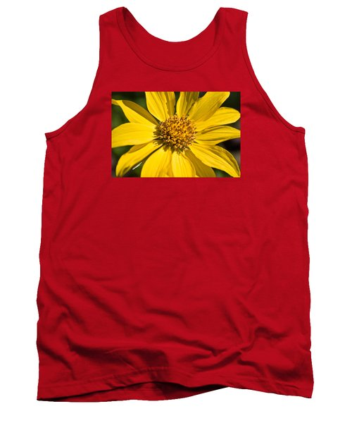 Balsamroot 2 Tank Top