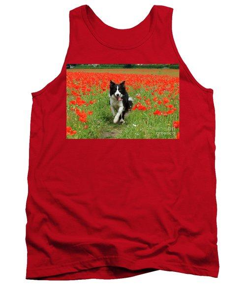 Border Collie In Poppy Field Tank Top