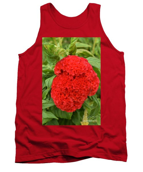 Bright Red Cockscomb Tank Top