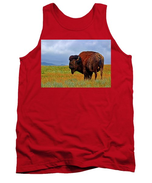 Tank Top featuring the photograph Buffalo 006 by George Bostian