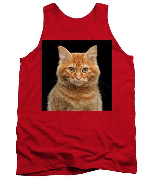 Close-up Portrait Of Ginger Kitty On Black Tank Top
