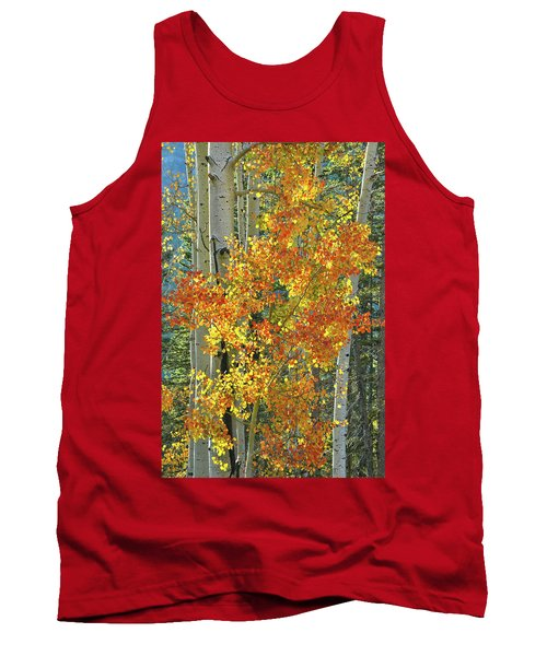 Colorful Aspen Along Million Dollar Highway Tank Top