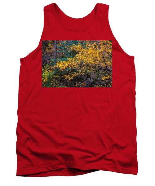 Colorful Trees Along The Creek Bank Tank Top