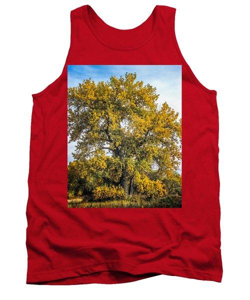 Cottonwood Tree # 12 In Fall Colors In Colorado Tank Top by John Brink