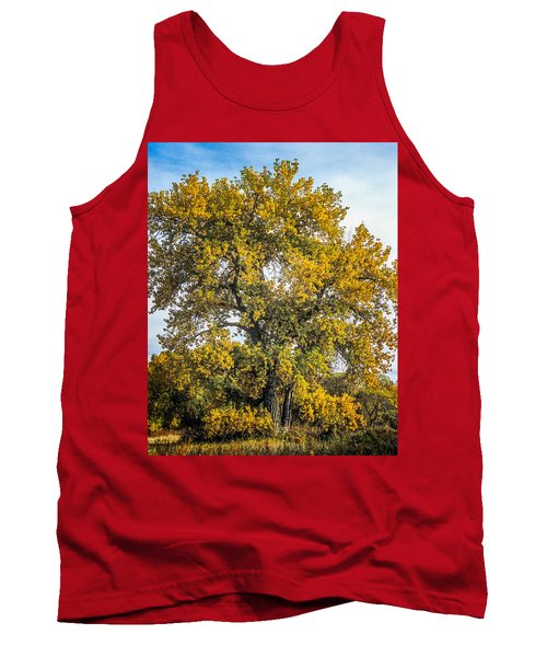 Cottonwood Tree # 12 In Fall Colors In Colorado Tank Top