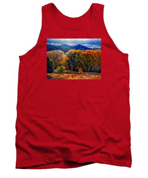 El Valle November Pastures Tank Top by Anastasia Savage Ealy
