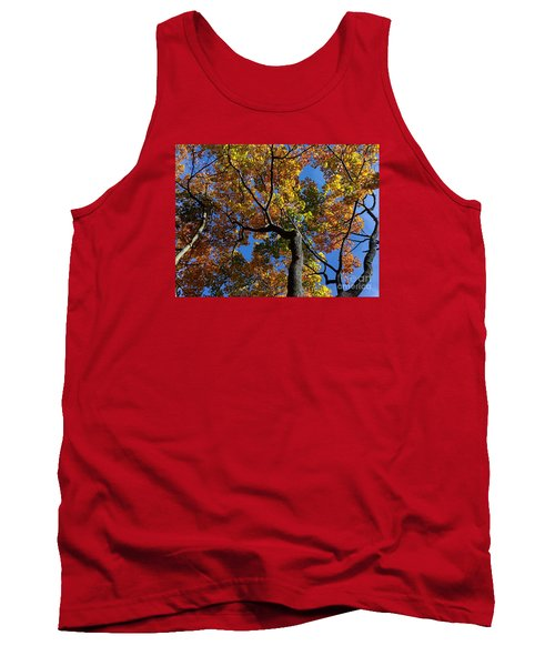 Tank Top featuring the photograph Fall Colorful Trees by Haleh Mahbod