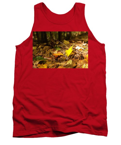 Fall In New Hampshire Tank Top