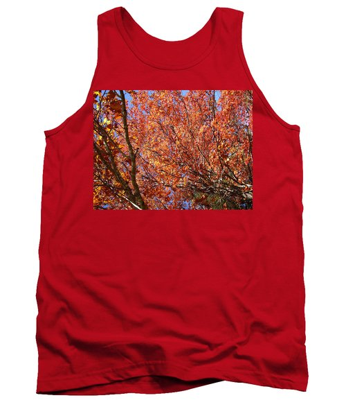 Fall In The Blue Ridge Mountains Tank Top