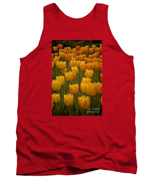 Fine Lines In Yellow Tulips Tank Top by Michael Flood
