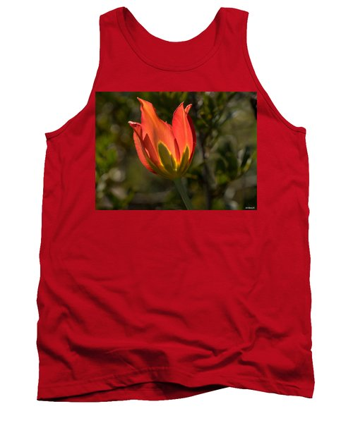 Flaming Beauyy Tank Top by Uri Baruch