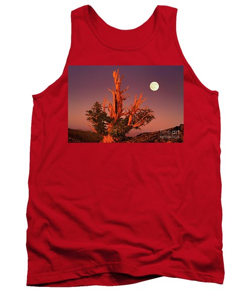 Full Moon Behind Ancient Bristlecone Pine White Mountains California Tank Top