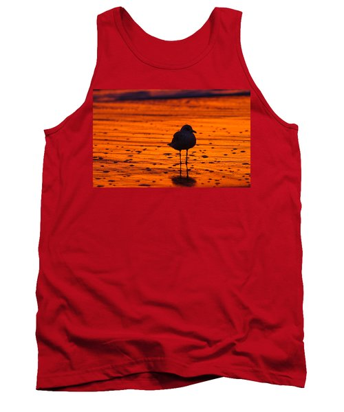 Gull Caught At Sunrise Tank Top by Allan Levin