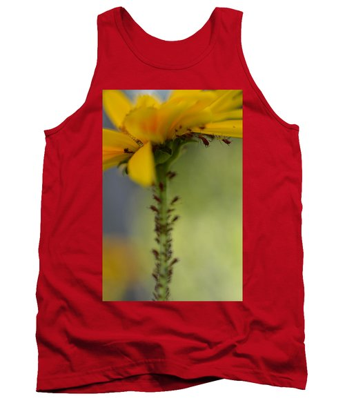 Heliopsis Infested Tank Top by Janet Rockburn