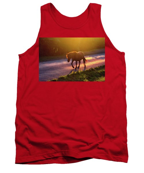 Horse Crossing The Road At Sunset Tank Top