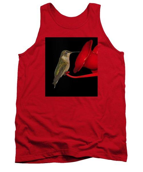 Hummingbird Nightcap 2 Tank Top by Phyllis Beiser