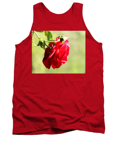 Kissed By The Sun Tank Top by Gabriella Weninger - David
