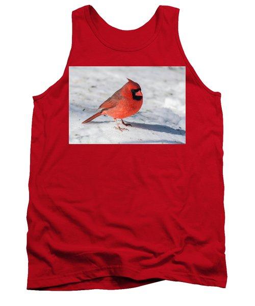 Male Cardinal In Winter Tank Top