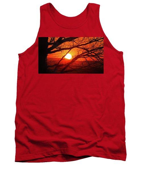 Naked Tree At Sunset, Smith Mountain Lake, Va. Tank Top