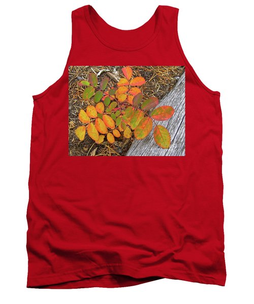 New And Old Life Cycles Tank Top
