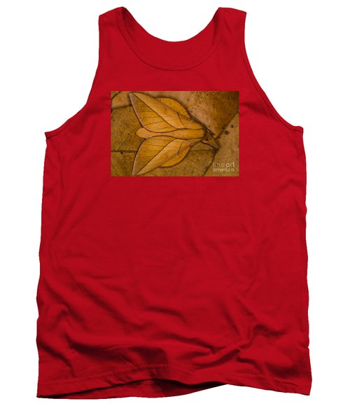 Tank Top featuring the photograph Oiticella Convergens Moth by Gabor Pozsgai