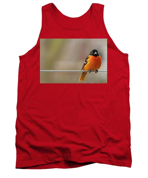 Oriole On The Line Tank Top