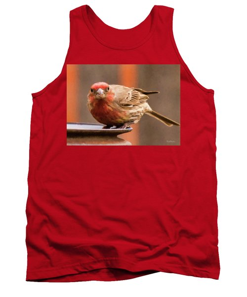 Painted Male Finch Tank Top