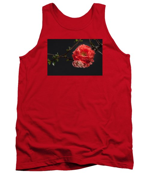 Red Plum In Early Spring Tank Top by Catherine Lau