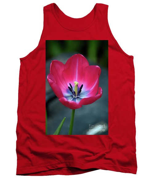 Red Tulip Blossom With Stamen And Petals And Pistil Tank Top
