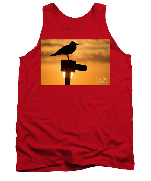 Seagull At Sunset Tank Top