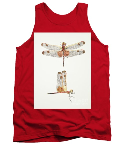 Top And Side Views Of A Male Calico Pennant Dragonfly Tank Top