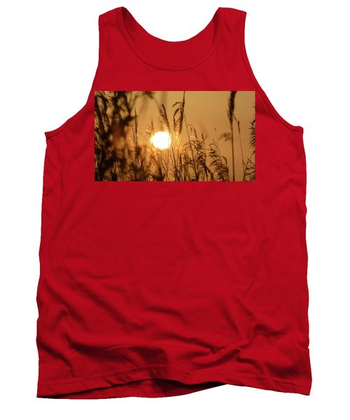 View Of Sun Setting Behind Long Grass B Tank Top
